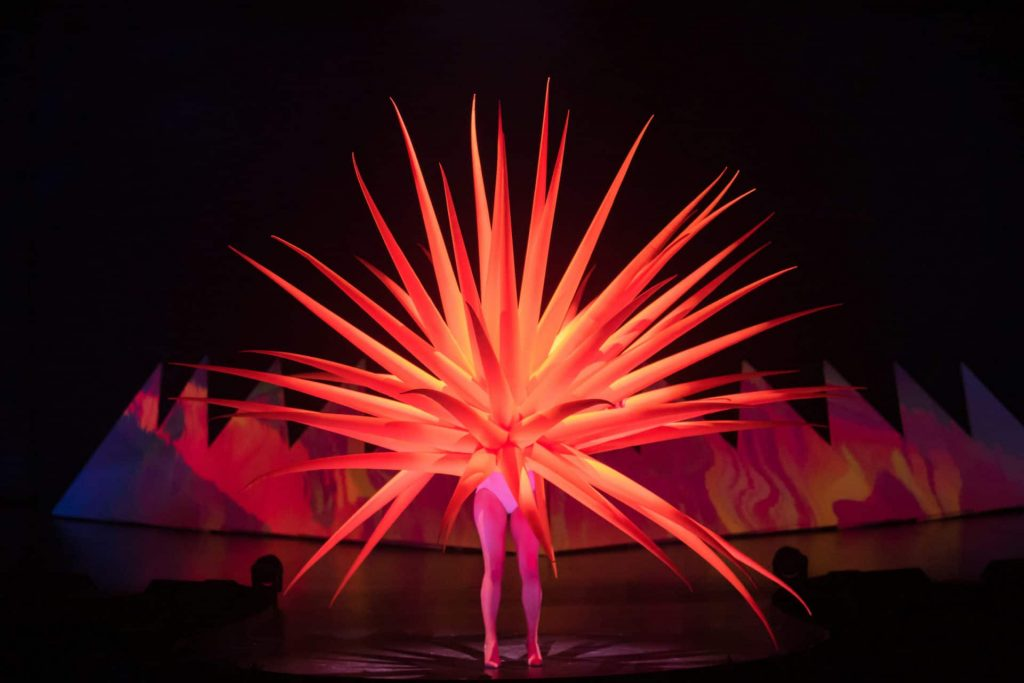 Carl Kruse Art Blog - Sea urchin Explosion by Jack Irving - at the WOW festival
